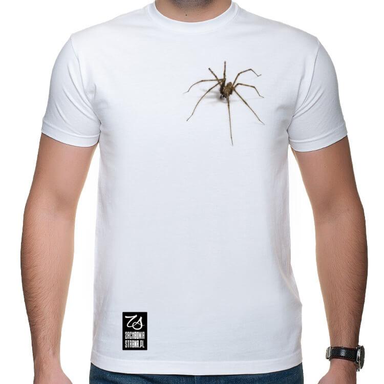 Koszulka z wielkim pająkiem